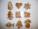 Reklamnepredmety Malý zdobený domáci vianočný perník, jednotlivo balený v celofáne