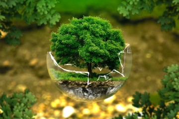 Bambus a korek – materiály, které jsou IN